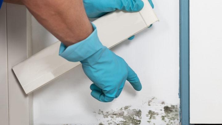 La ventilation : une solution contre les problèmes d'humidité