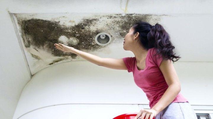 Infiltration d'eau : un problème sérieux facile à traiter
